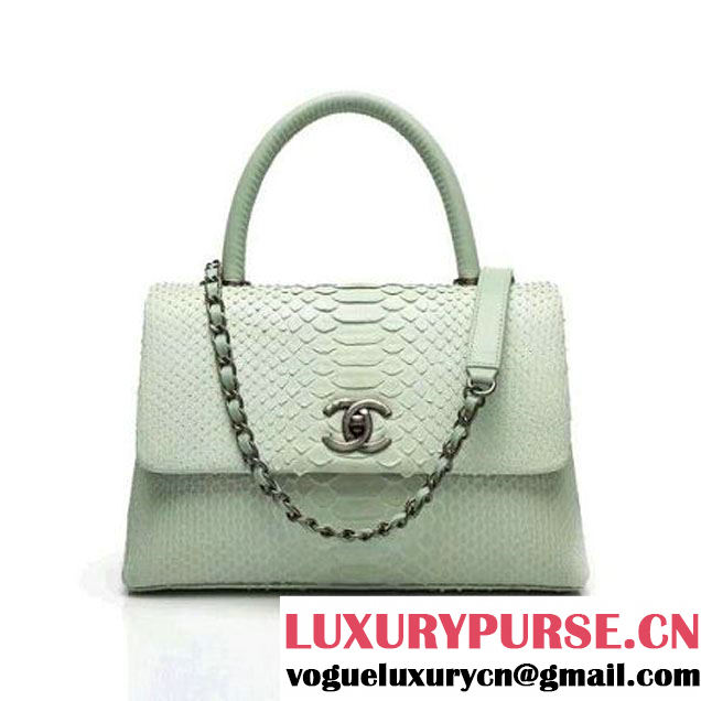 Chanel A93050 Small Python and Lambskin Flap Bag With Handle Light Green Pre-SS 2016 (XY-6041245 )